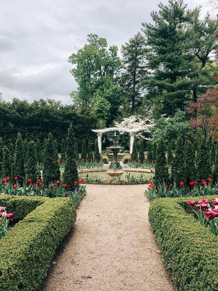 jardin luxe